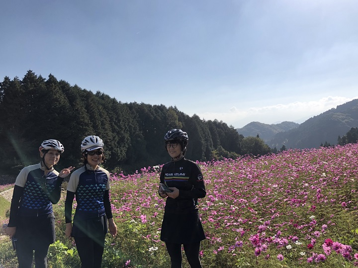 【HIME☆DOライド】11/10フォトレポ・天川コスモス畑とカレーランチ♪