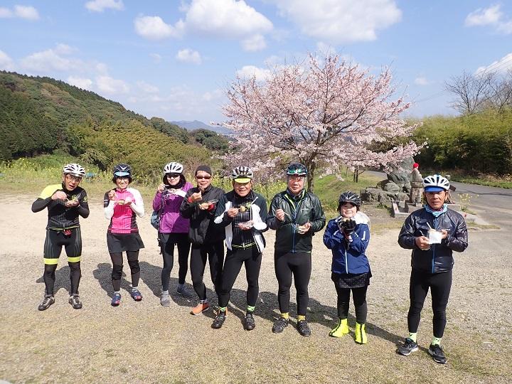 【Gentle Ride 55歳以上のクラブライド】桜を訪ねて&おはぎツーリング 3/31フォトレポ