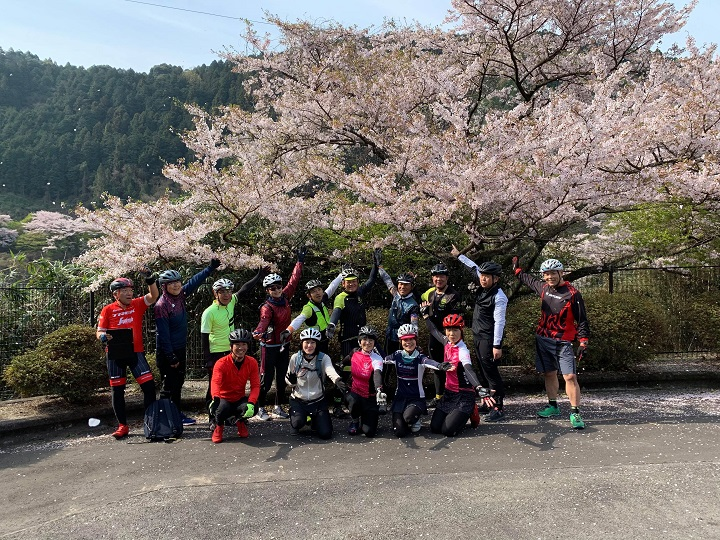 【モーニングライド・黒瀬ダム~石鎚ロープウェイ乗り場まで】春を満喫ライドして来ました!