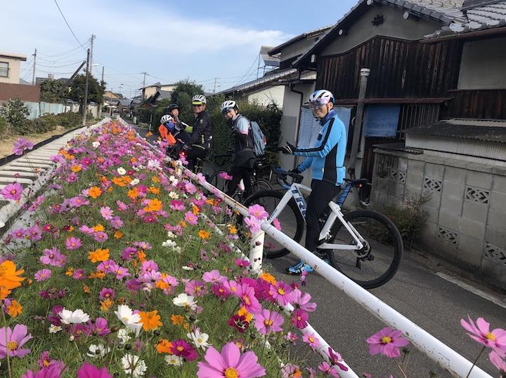 【のんびりモーニングライド】11/17新居浜サイクリングロードと広瀬公園。Gojyoのタマゴロールでもぐもぐタイム♩