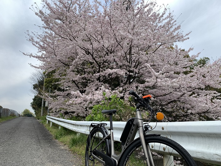 【e-bike(電動アシストスポーツバイク)四国中央市お花見サイクリング】高速側道のアップダウンも快適♪