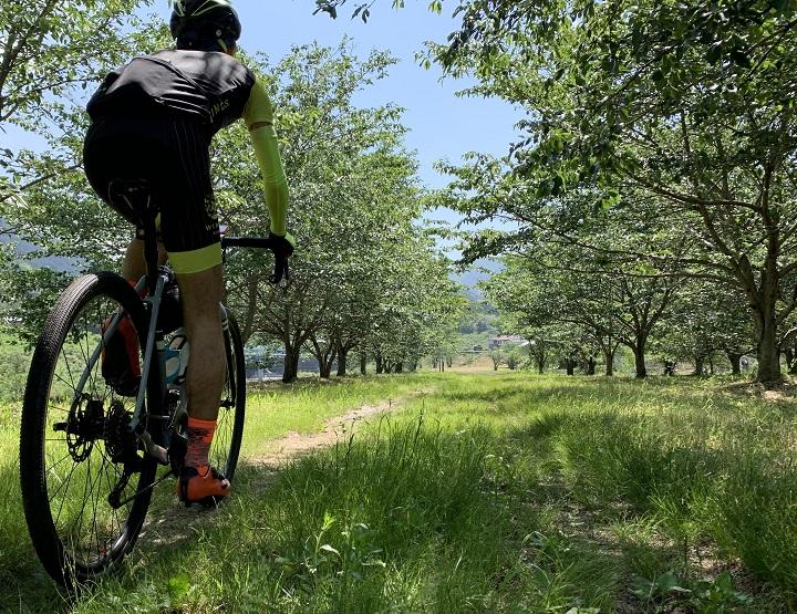 【近場で道探検ライド♪】西条市をグラベルロードバイクで
