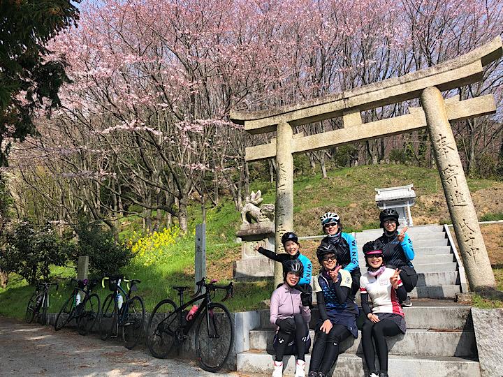 【水曜女性ツーリング】西条・桜とスィーツ堪能し過ぎ?ライド♪3/17 フォトレポ